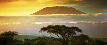 Kilimanjaro tours in Tanzania
