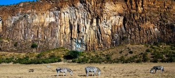 5 Day Kenya and Tanzania Safari
