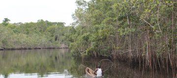 Conkouati Gouli National Game Park