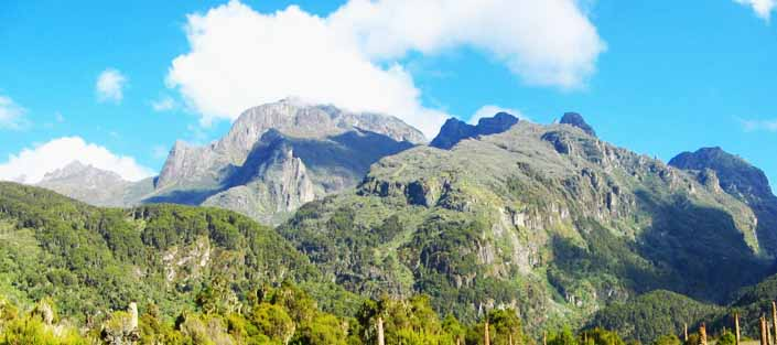 How to Plan a Hike to Mount Rwenzori