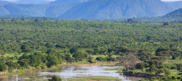 Jozani Chwaka Bay National Park