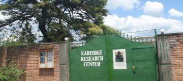 Karisoke Research Institute