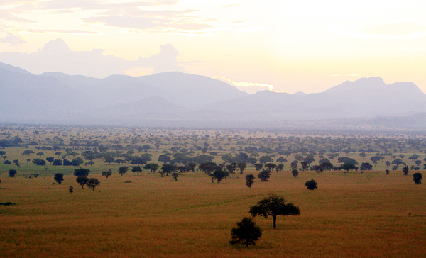 Narus Valley of Kidepo