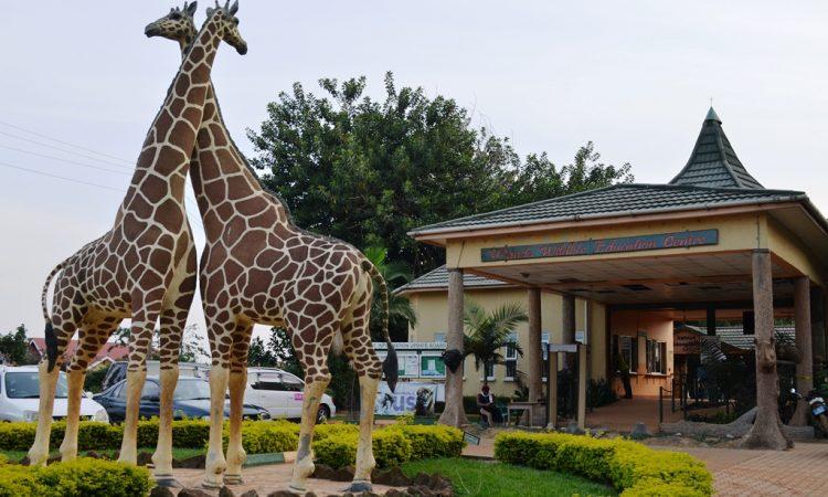 Uganda Wildlife Education Center