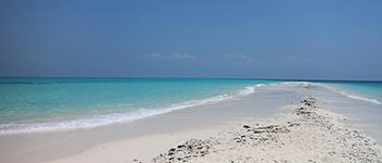 Tailor made trips to Zanzibar