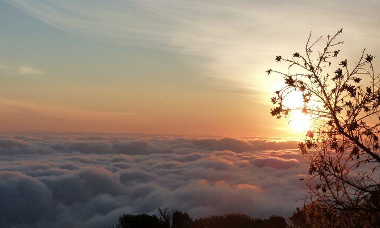 6 Days Safari in Kilimanjaro